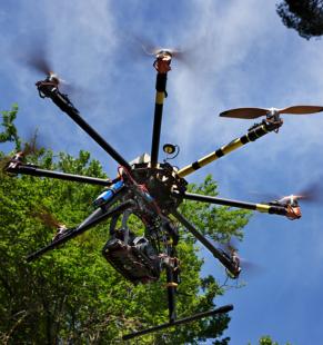 Dronefarm